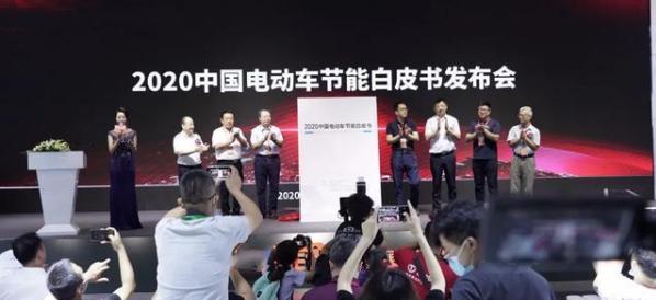 """2020第五届华南电动车展开幕 """"新老队员""""齐放""""大招"""""""